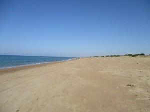033-Glifa-Arkoudy-Beach
