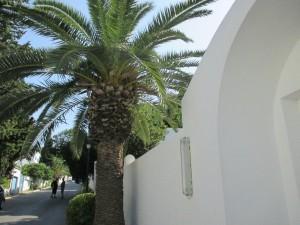 1-325Lagoulette_Tunisia