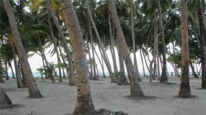 105Mathivery_Maldives