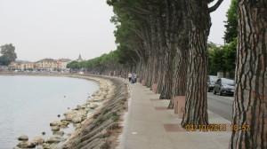 02-061Lago_di_Garda